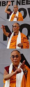 丹增嘉措(達賴喇嘛)