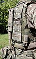 Virtus body armour, visible is the integral rigid spine that forms part of the kit's Dynamic Weight Distribution (DWD) System. MOD 45159170.jpg