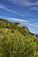 Vista verso le falesie ad Est - panoramio.jpg