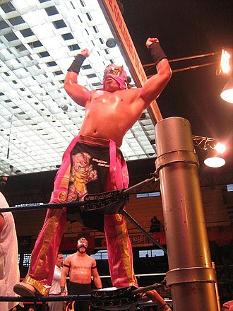 Volador Jr. - Volador Jr. at Arena Coliseo Guadalajara in 2007