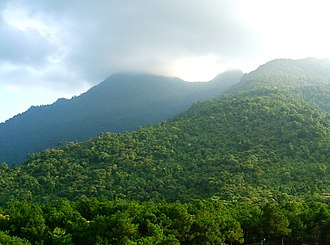 Ba Vì National Park - Image: Vuon QG Ba Vi