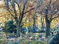 WLE 2017 Melatenfriedhof 02.jpg