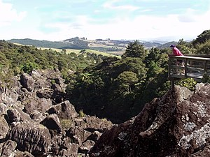 Horeke basalts - Wairere valley