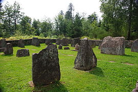 The Gallo-Roman cemetery in Walscheid