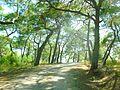 Wanderungweg um Seleukia Side Manavgat am Taurusgebirge http-www.tuerkeiwandern.net - panoramio.jpg
