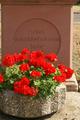 Wasserlos Friedhofskreuz (04).png