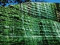 Waterfall - panoramio - ソキ.jpg