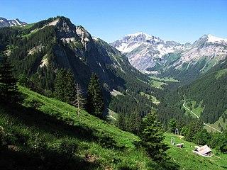 Weisstannen village in Switzerland