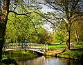 White Bridge, Morden Hall Park.jpg