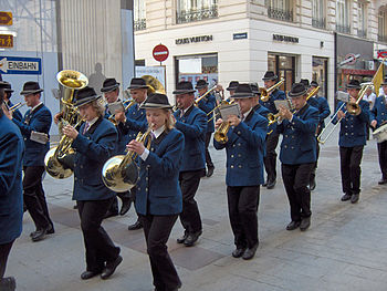 Marching band parading in the streets of Vienn...