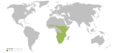 Wiki-Panthera leo.png