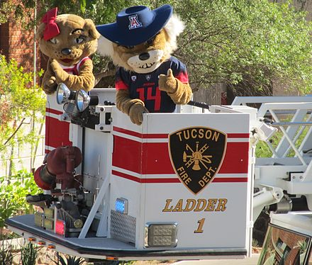 Wilma & Wilbur Wildcat at the 100th homecoming at the University of Arizona Wilma & Wilber Wildcat in the bucket of Tucson Fire Department ladder truck 1.JPG