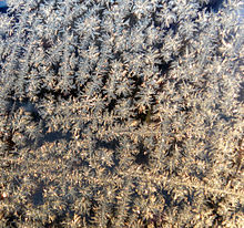 WindowFrost121609.jpg