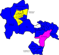 Windsor and Maidenhead 2007 election map.png