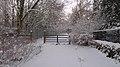 Winter on Brook's Drive, Davenport Green - geograph.org.uk - 1863630.jpg