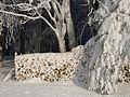 Wintereinbruch.JPG