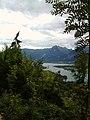 Wolfgangsee - panoramio.jpg