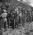 Women pruning pears in the walled garden at the Women's Horticultural College at Waterperry House in Oxfordshire, 1943. DB252.jpg
