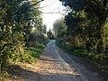 Worthing, UK - panoramio (107).jpg