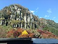 Yabakeimachi Oaza Shinyaba, Nakatsu, Oita Prefecture 871-0422, Japan - panoramio (14).jpg