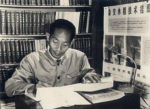 Yuan Longping - Yuan Longping in 1962