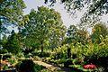 Zentralfriedhof Ibbenbueren 19.jpg