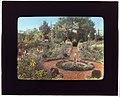 """Gardenside,"" Frederick Augustus Snow house, Ox Pasture Road, Southampton, New York. LOC 7221365308.jpg"