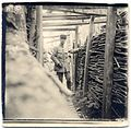 (Raoul Berthelé dans une tranchée allemande à la Verrerie à Vauxrot) - Fonds Berthelé - 49Fi1858.jpg