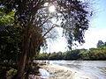 Águas S Bárbara 130610 REFON 24.JPG