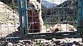 Ведмеді Озеро Синевир.jpg