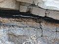 """Вихід пласту вугілля у вигляді """"сажі"""" на поверхню в занедбаному кар'єрі поблизу Федорівки.jpg"""