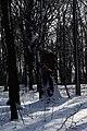 Голосіївський ліс DSC 0181.jpg