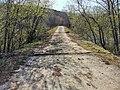 Заброшенный мост.jpg