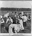 Заготовка сена в России.1897 - 2.jpg