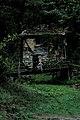 Западна Стара Планина и Предбалкан - ЗЗ по директивата за местообитанията – ZZ1040 – Екопътека Под Камико, с. Бов - No11.jpg