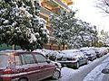 Зима в Афинах - panoramio (10).jpg