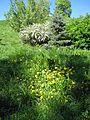 Парк «Слави» IMG 5102.jpg