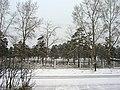 Парк БСМП (вид на северо-восток) - panoramio.jpg