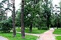 Парк Сосенки в районе Царицыно. Вид с Тимуровской улицы.JPG