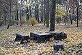 Парк відпочинку Берізка 13.jpg