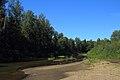 Река Илеть 05.jpg