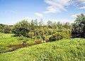 Река Хвощевица в Орловском районе Кировской области.jpg