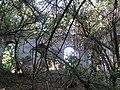 Руины межировской синагоги3.jpg