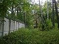 Усадьба Петровское, парк с прудами, сосновая аллея.jpg