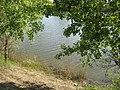 Усолка-Иртыш (Irtysh) - panoramio (19).jpg