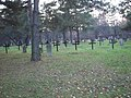 Шумарице - војничко гробље 01.JPG