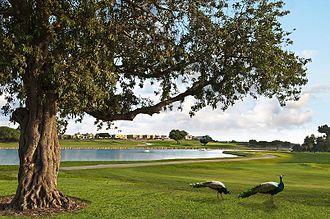 Caesarea Golf Club - hole no. 7