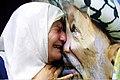 رحيل الرئيس ياسر عرفات.jpg