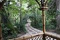 ქუთაისის ბოტანიკური ბაღი 07.jpg
