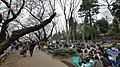 井の頭公園 - panoramio (42).jpg